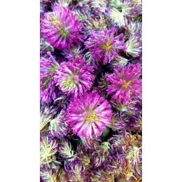 CannaMama Selected Organic Hemp Flower Buds rich in CBD 20 g / 0.71 oz